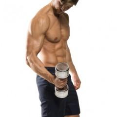 junger Mann beim Krafttraining und Muskelaufbau
