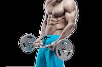 Programme de musculation avec barre